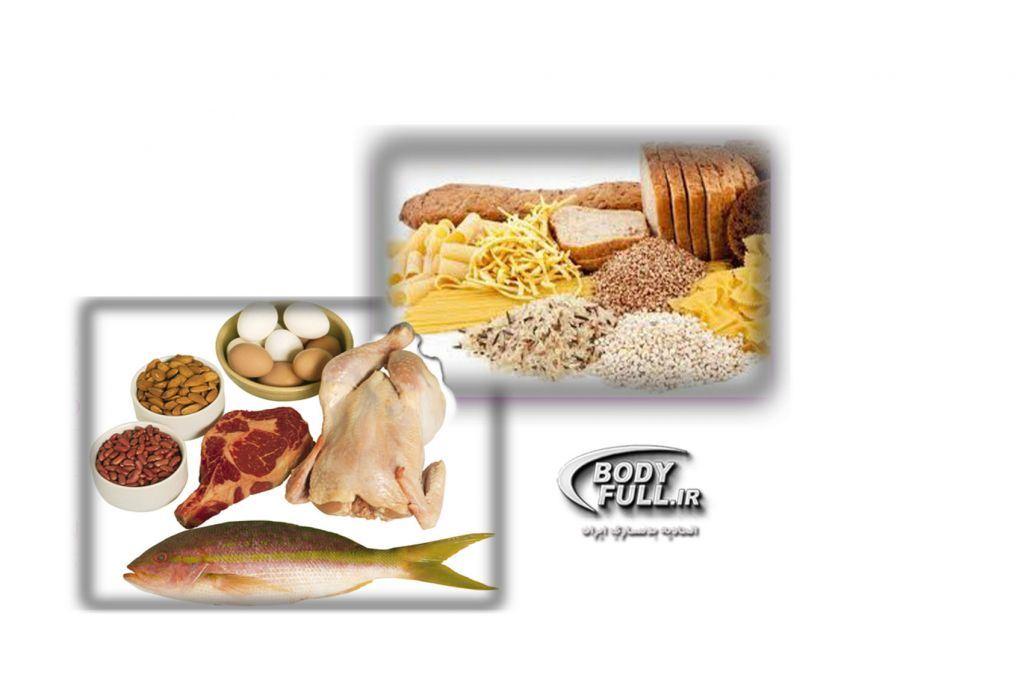 مواد غذایی - تغذیه در بدنسازی