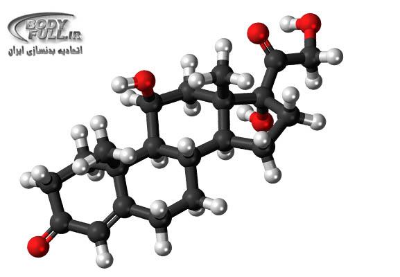 ساختار سلولی آمینو