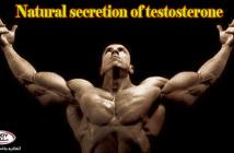 3 حرکت برای افزایش ترشح طبیعی هورمون تستوسترون