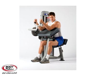 0000246_triceps_extension__400