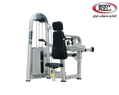 0000269_triceps_press__400